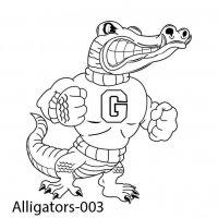 alligator-03