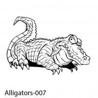 alligator-07