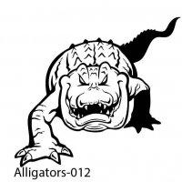 alligator-12