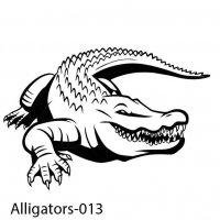 alligator-13