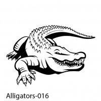 alligator-17