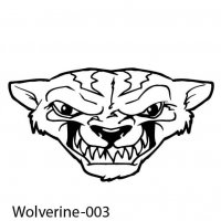badger-wolverines-03