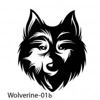 badger-wolverines-18