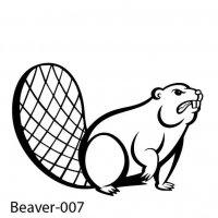 beaver-07